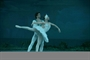 Russian National Ballet Theatre - Sutherland